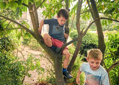 tress-climbing-fun