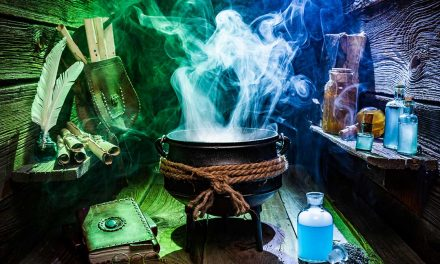 School for Witchcraft and Wizardry family activity