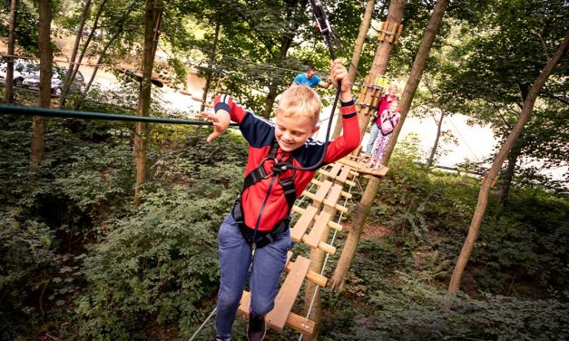 Adventures for all the family at Go Ape – Temple Newsam in Leeds