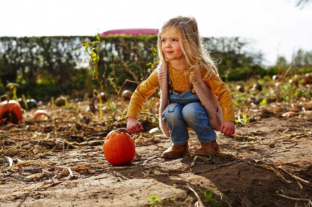 Young girl picking up a pumpkin