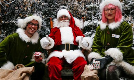 The Christmas Experience – the ultimate family festive day out!