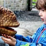 Jurassic special family trains at Keighley & Worth Valley Railway this half-term