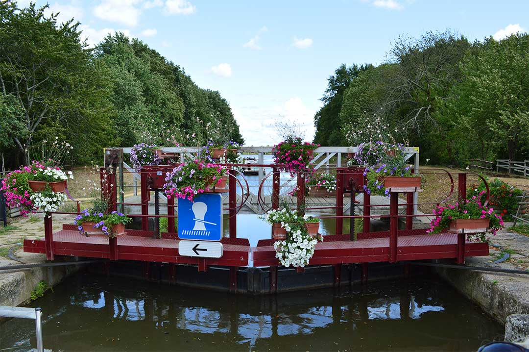 Lock gates covered in beautiful flowers