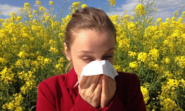 Would You Like Help Coping With Your Child's Hay Fever?